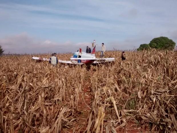 Avião pouso forçado MS (Foto: Polícia Civil/ Divulgação)
