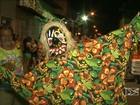 Foliões exercitam lado criativo no Carnaval (Reprodução/TV Mirante)
