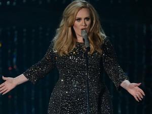 Adele canta 'Skyfall' durante a cerimônia do Oscar 2013 (Foto: AFP PHOTO/Robyn Beck)