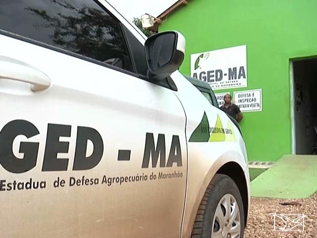 Fabricação de produtos falsificados podem ser origem no Tocantins (Foto: Reprodução/TV Mirante)
