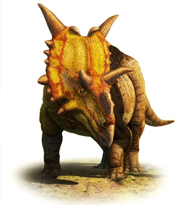 """Ilustração mostra como seria o 'Xenoceratops foremostensis', dinossauro herbívoro descoberto no Canadá (Foto: Divulgação/Julius Csotonyi/""""Canadian Journal of Earth Sciences"""")"""