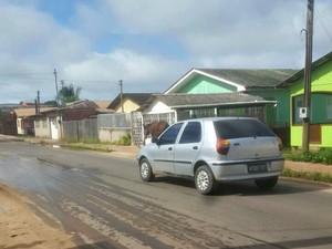 Animais são vistos trafegando pela via pública em bairro de Cruzeiro do sul  (Foto: Anny Barbosa/G1)