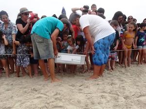 Crianças e adultos conhecem o animal antes da soltura (Foto: Tamar/Divulgação)