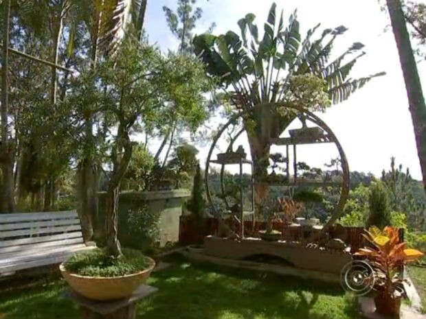 Arquiteto de Mairinque usa jardins em miniatura como terapia (Foto: Reprodução/ TV TEM)