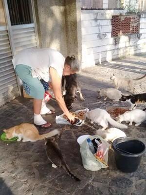 Moradores das proximidades do hospital abandonado dão comida aos animais despejados no local (Foto: Vânia Rodrigues/Arquivo Pessoal)