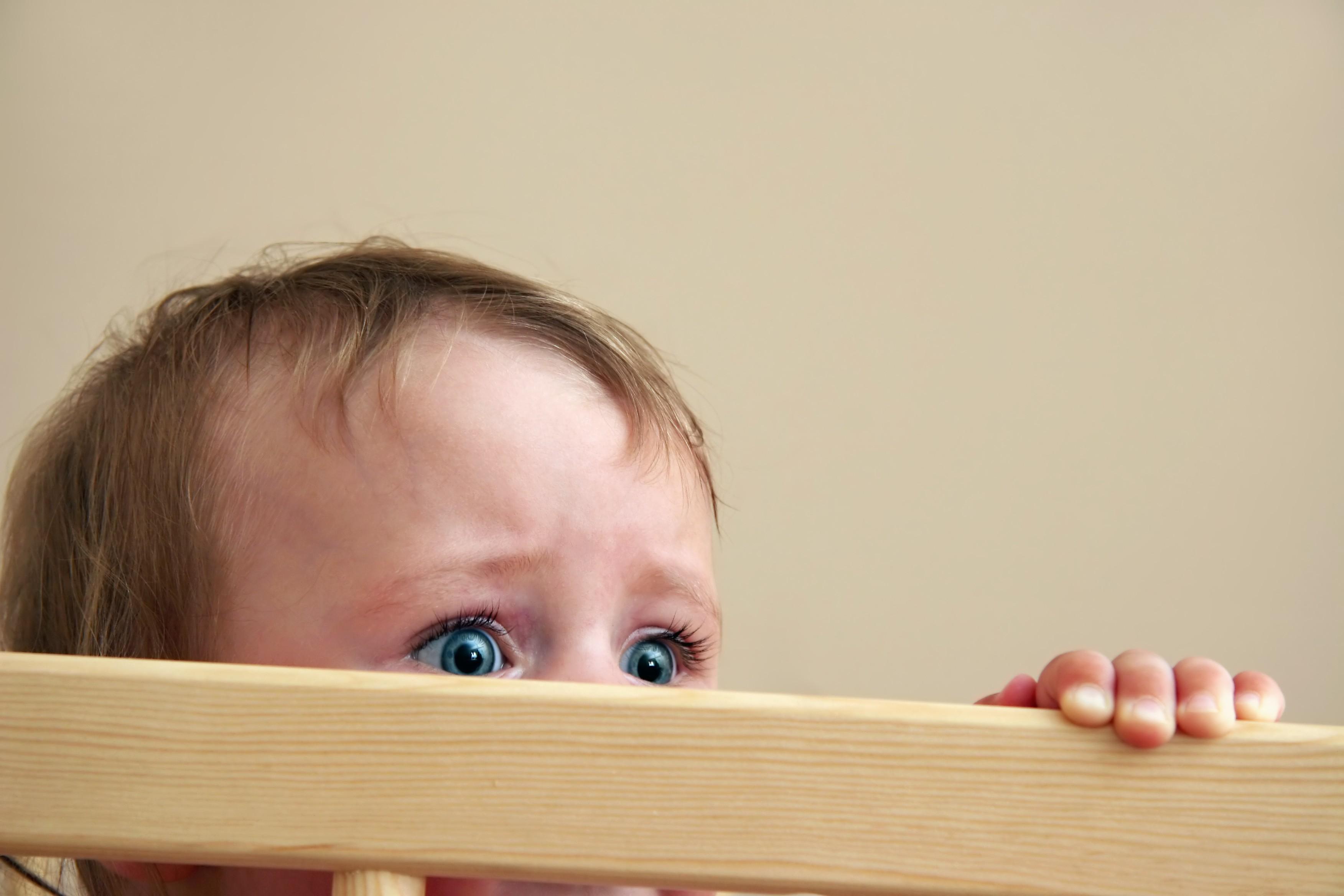 Estudo revela que crianças têm com medo de aranha e cobra (Foto: ThinkStock)