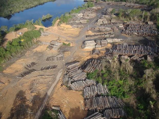 Empresa foi punida por causa da comercialização indevida de créditos e dos danos ambientais às margens do rio (Foto: Divulgação/ Ascom Ibama)