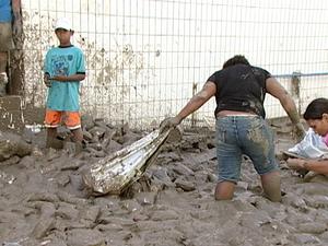 Resultado de imagem para enchentes em pernambuco
