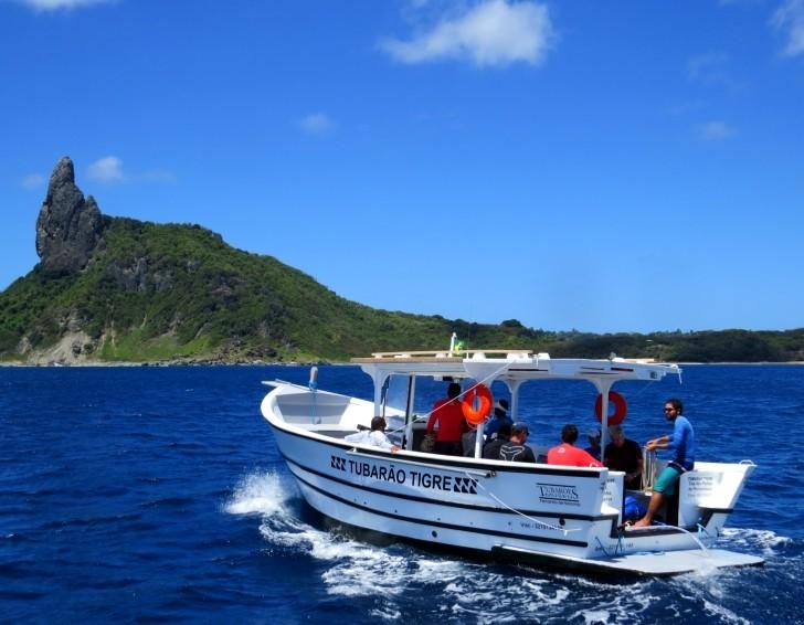 Tubarão-tigre barco Noronha