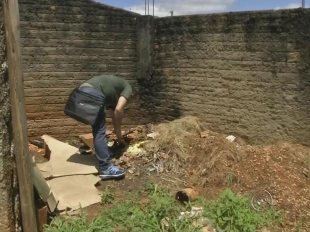 Vigilância diz encontrar focos do mosquito em terrenos (Foto: Reprodução/ TV TEM)