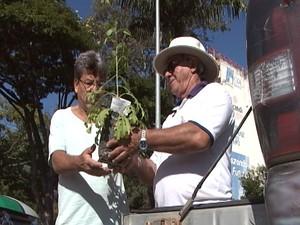 Mulher recebe muda de árvore (Foto: TV Integração/Reprodução)