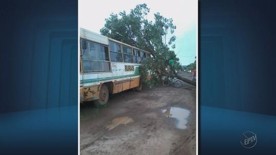 Chuva forte deixa estragos em distrito de São Sebastião do Paraíso, MG