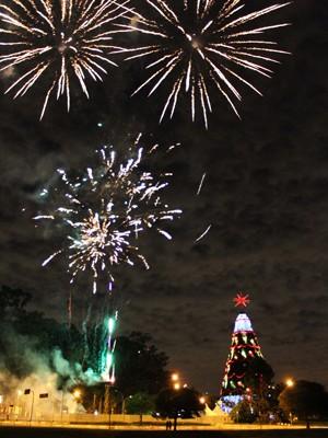 Árvore de Natal do Ibirapuera foi inaugurada neste domingo (9) (Foto: Renato S. Cerqueira/Futura Press/Estadão Conteúdo)