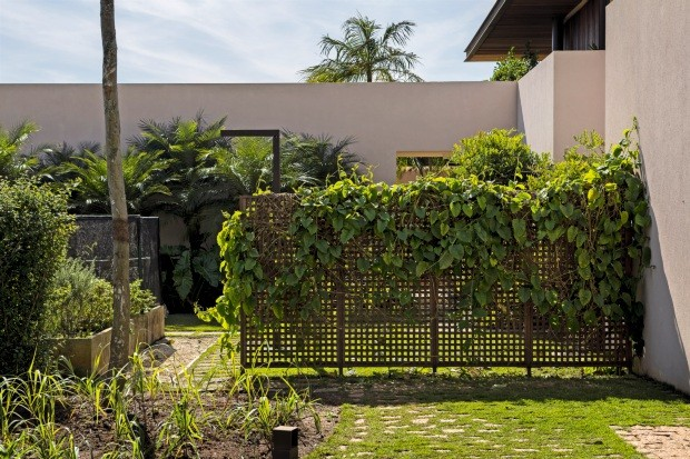 Horta. Os temperos e hortaliças foram dispostos em caixas elevadas para facilitar o acesso. Na treliça de madeira, cresce um maracujazeiro (Foto: Edu Castello / Editora Globo)