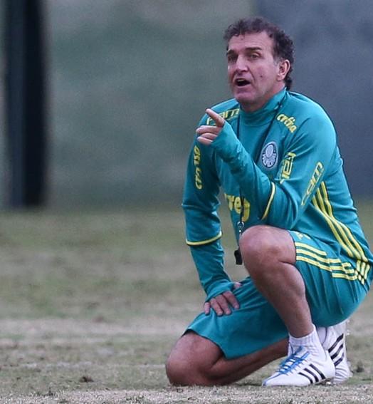 o cuca vai te pegar... (Cesar Greco/Ag Palmeiras/Divulgação)
