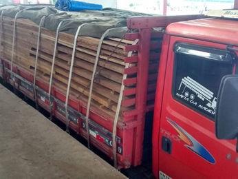 Caminhão com madeira irregular foi flagrado em rodovia (Foto: Assessoria/Sema-MT)