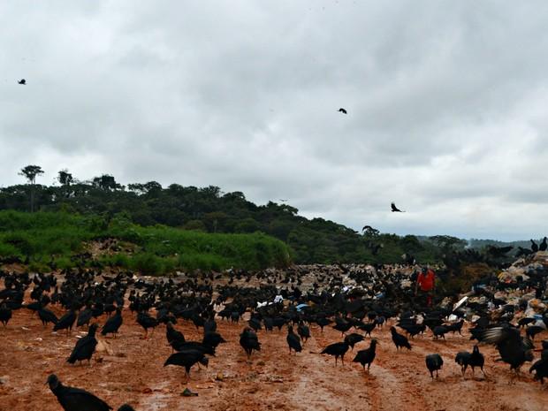 Prefeitura acredita que medida deve ajudar pessoas que vivem às margens do lixão  (Foto: Adelcimar Carvalho/G1)