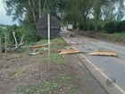 Chuva derruba eucalipto e deixa desalojados em cidades do Sul de MG