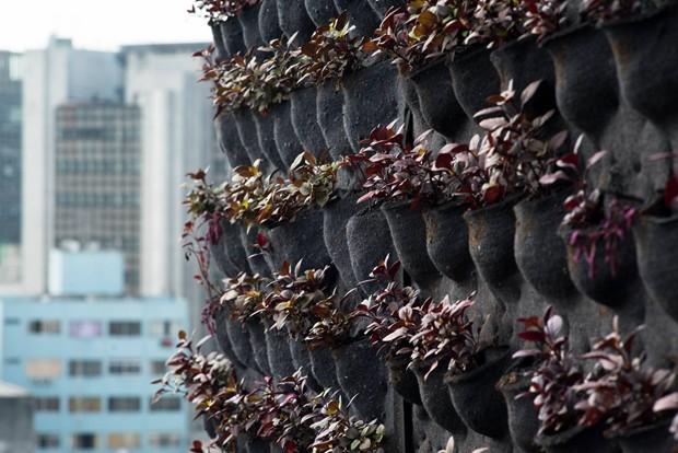 Entenda como montar um jardim vertical (Foto: Divulgação)