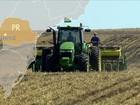 Começa o plantio de soja, milho e feijão da nova safra de grãos no PR