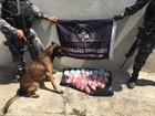 Operação com cães apreende drogas no Manoel Corrêa, em Cabo Frio, RJ