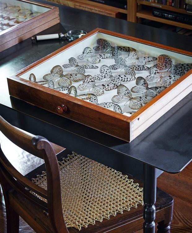 Detalhe. A escrivaninha exibe a ampla coleção de borboletas. No espaço, livros e peças de cerâmica remontam a história de Babylonstoren (Foto: Greg Cox / Bureaux)