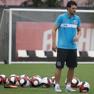 Elano - Santos (Foto: Ivan Storti/Divulgação Santos FC)