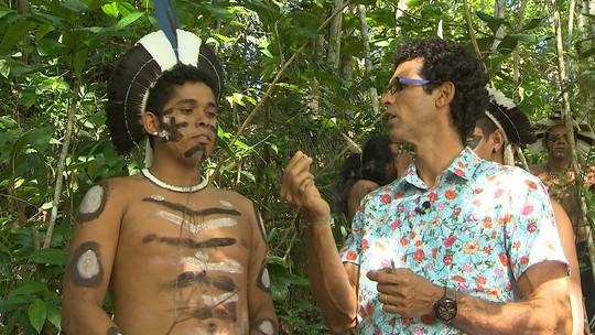 Veja como algumas nações indígenas usufruem de plantas medicinais