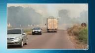 Incêndio consome vegetação rasteira em área às margens da PA-370; veja vídeo