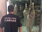 Homem é preso em flagrante com carne roubada em Porto Alegre