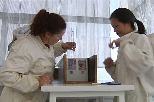 pesquisadores (Foto: Reprodução/BBC)