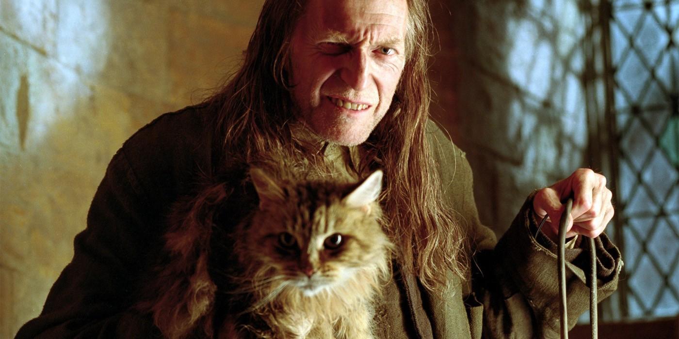 Filch em Harry Potter (Foto: Divulgação )