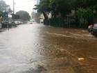 FOTOS: chuva alaga várias ruas de Salvador (Renan Pinheiro/TV Bahia)