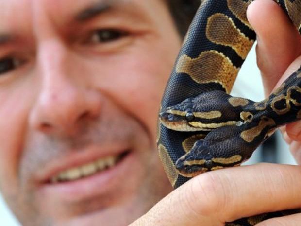 Em 2011, o criador de cobras Stefan Broghammer exibiu uma píton com duas cabeças em Villingen-Schwenningen, no sul da Alemanha (Foto: Patrick Seeger/AFP)