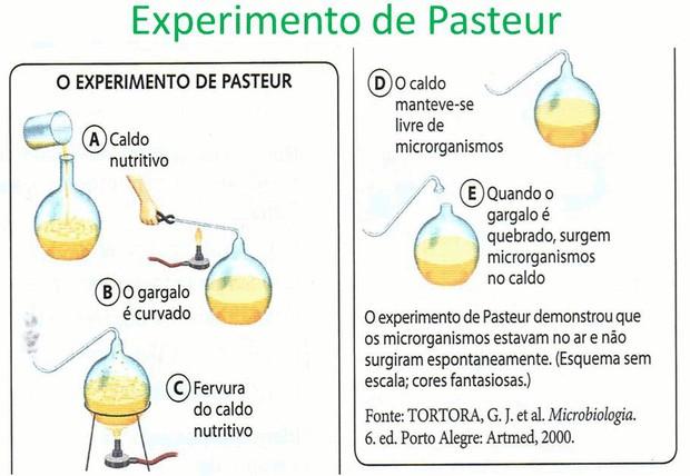 Ilustração do experimento de Pasteur (Foto: Slideplayer)