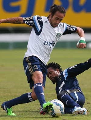 Zé Roberto Valdivia Palmeiras