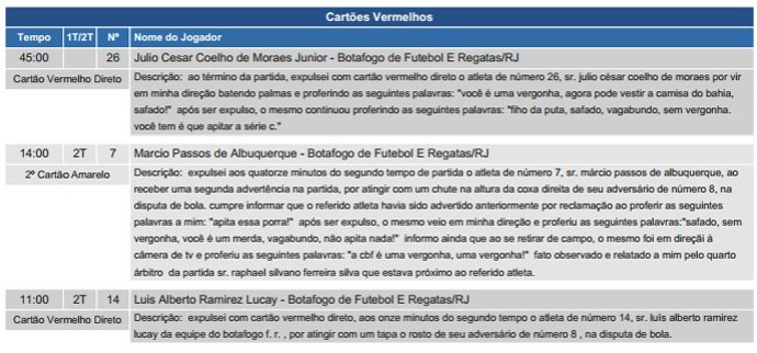 Súmula expulsão jogo Botafogo e Bahia (Foto: CBF)