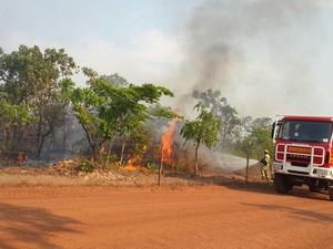 Incêndio está sendo controlado por oito homens da Defesa Civil (Foto: Rachel Lemos/TV Anhanguera)