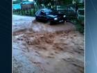 Árvores atingem carros, e outdoor cai em poste durante chuva em Goiânia