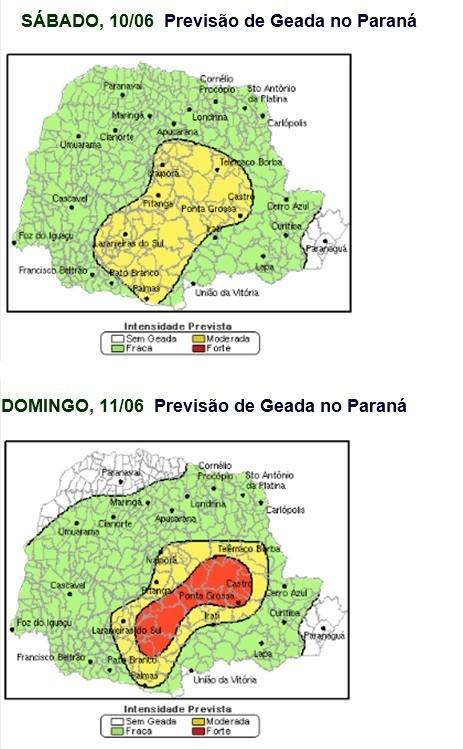 Geada Paraná (Foto: AgRural/Simepar)