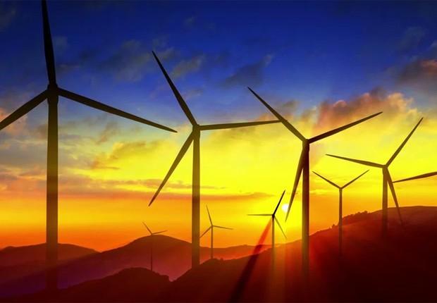 Energia eólica: estados brasileiros investem na tecnologia (Foto: Divulgação)