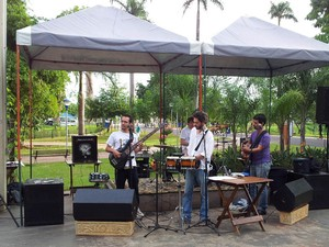 'Se Vira Ribeirão' levou shows musicais para o Parque Maurílio Biagi (Foto: Adriano Oliveira/G1)