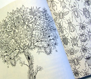 """Página do livro """"Jardim secreto"""" (editora Sextante) (Foto: Sidinei Lopes/ÉPOCA)"""