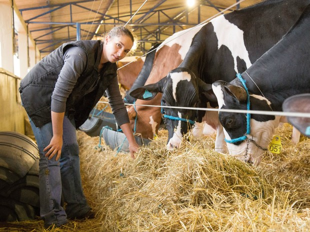 Marisa Bekkers, 34 anos, aprendeu na infância a cuidar de vacas holandesas (Foto: Raul Voorsluys/Assessoria de Imprensa )