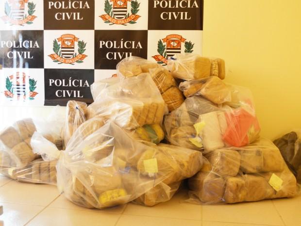 Mais de 300 quilos de pasta base de cocaína foram encontrados no avião (Foto: Divulgação / Polícia Civil de Avaré)