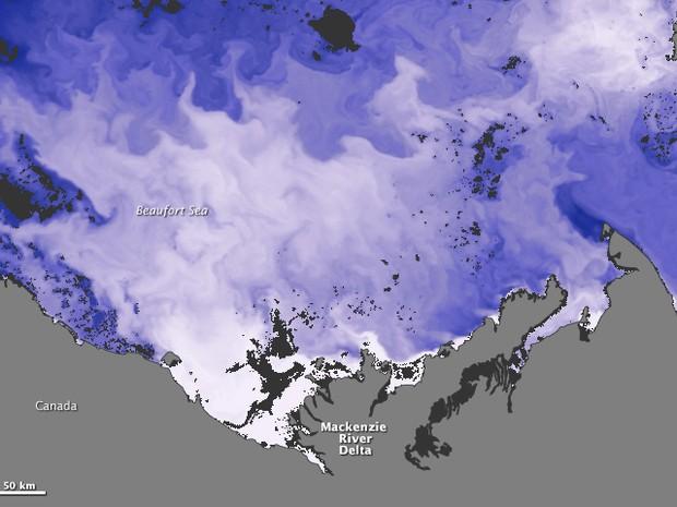 A imagem de 5 de julho mostra como a água mais quente do rio (em azul mais claro) se espalha pelo oceano próximo (Foto: Nasa)