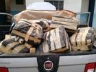 PF faz operação contra tráfico de drogas em duas cidades de MS