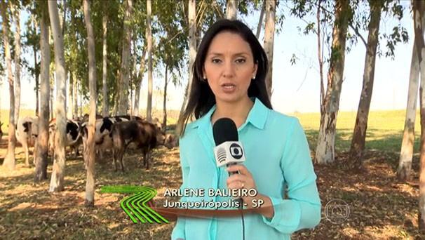 A repórter Arlene Balieiro apresentou a matéria exibida no Globo Rural (Foto: Reprodução/Globo Rural)