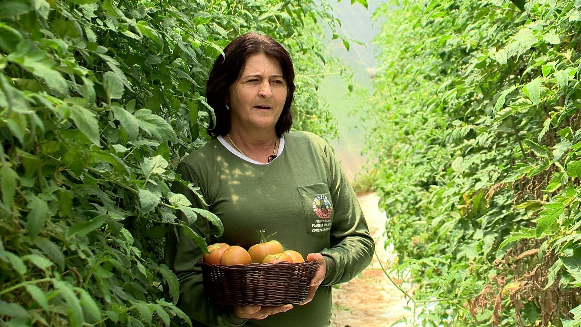 Dona Selene Tesch, percursora do orgânico em Santa Maria de Jetibá (Foto: Divulgação/ TV Gazeta)