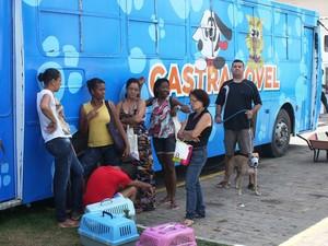 Castramóvel fica em Valéria até a próxima quarta-feira (16). Só no bairro já foram realizados 260 atendimentos (Foto: Divulgação / Agecom)